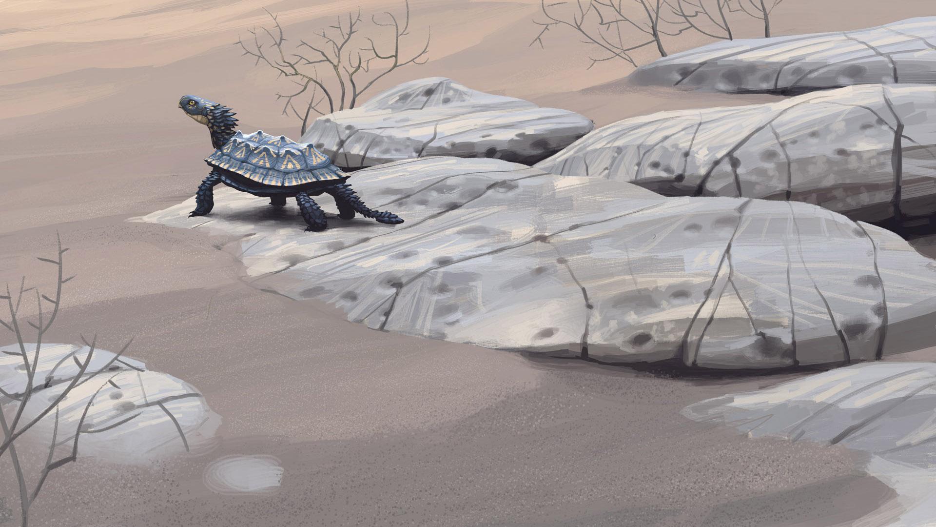 proganochelys.jpg